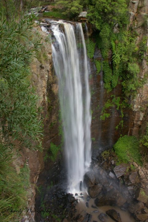 Queen Mary Falls Waterfall