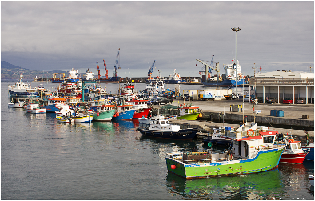Marine colors Ponta Delgada, Sao Miguel (Azores)