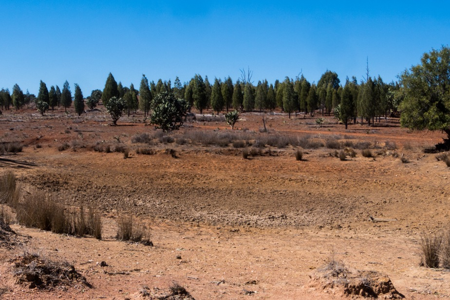 Dry dam in drought