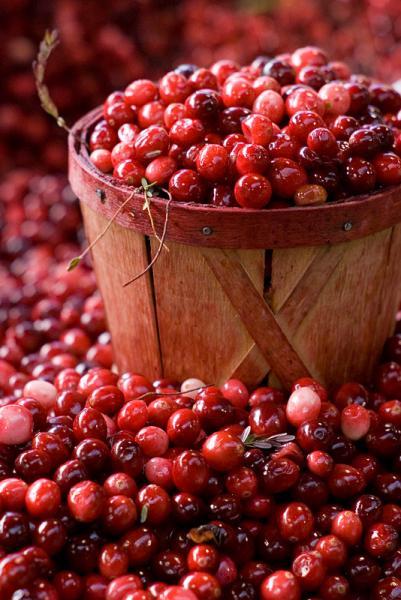 Montreal Cranberries