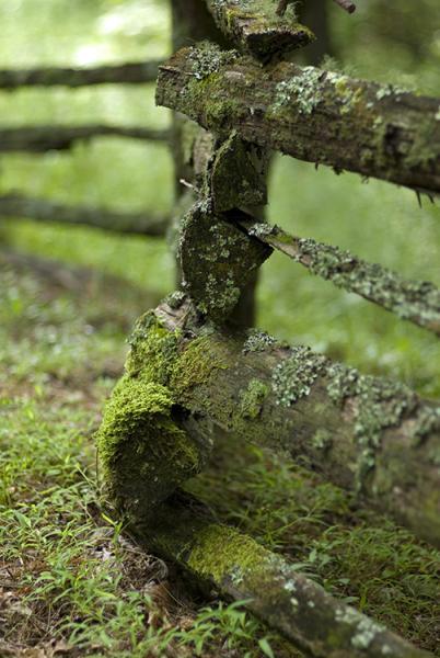 WPA Fence