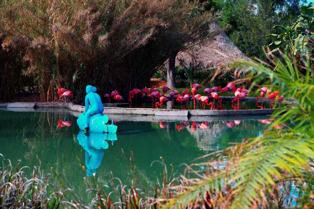 Sirena pez y flamingos
