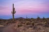 Dawn in Sonoran Preserve