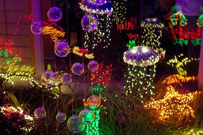 Light Aquarium