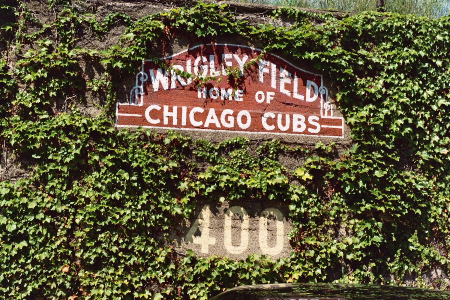 el hombre design every man needs his space the ivy covered outfield for the o a signed ryne sandberg bat for the l and the y from the wrigley field sign the c is pretty obvious amipublicfo Gallery