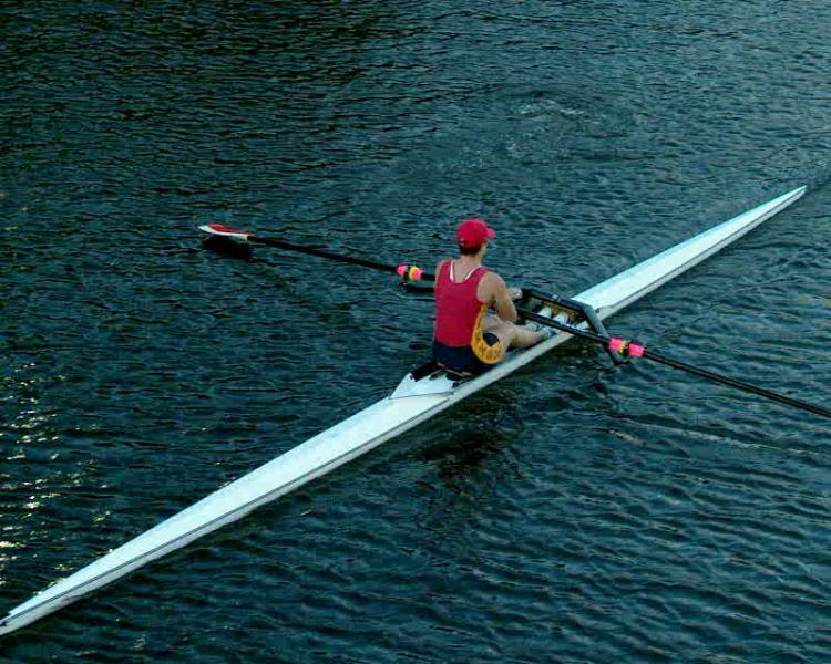 Sculler on the Yarra river