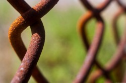 "August Photo Contest: ""Fences"""