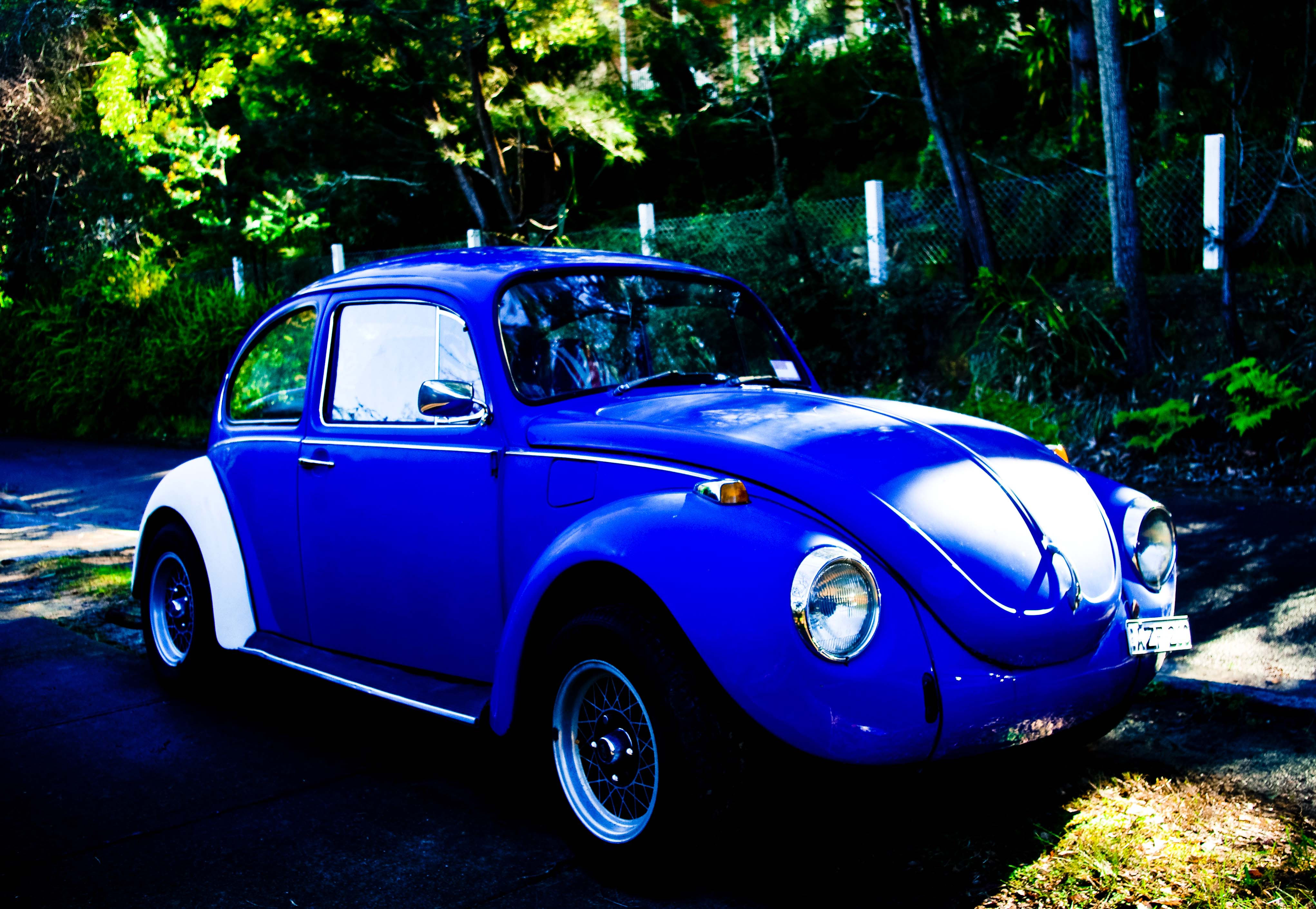 Punch Buggy Pentax User Gallery