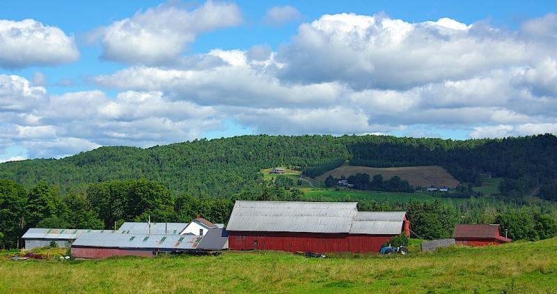 New Hampshire Farm