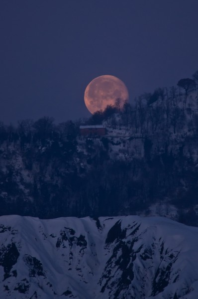 Early morning moon in the snow