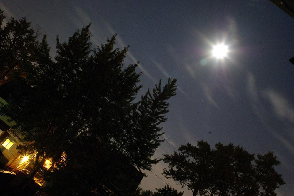 Full Moon on a Summer Night