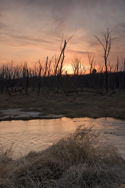 Old Frontenac Sunset