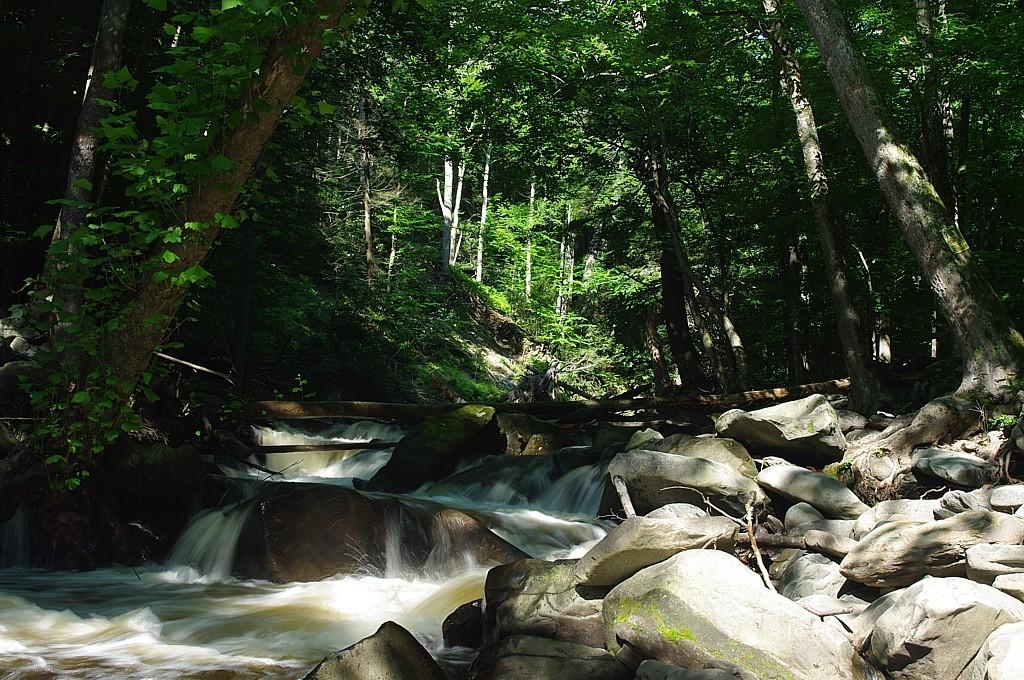 WPD - Nerversink River
