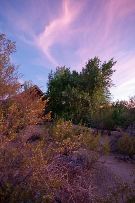 Wildfire Backyard Sunset
