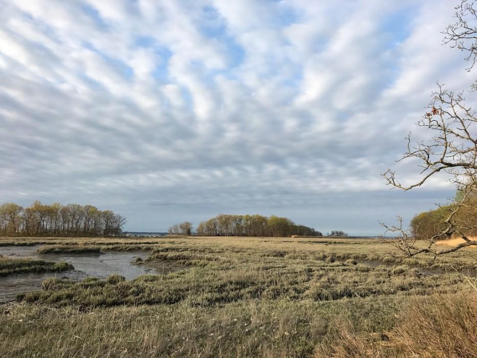 Marshlands Conservancy, Rye NY
